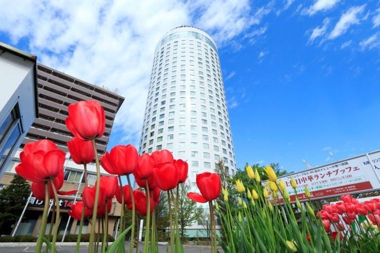 札幌プリンスホテルタワー   地上107m 360度からの眺望! 写真1
