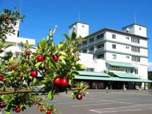 津軽のお宿 南田温泉ホテルアップルランド 写真