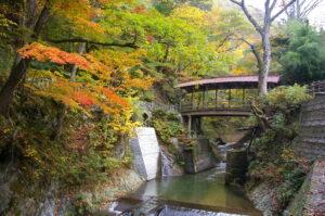 丸子観光協会 写真